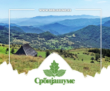 Srbija Sume